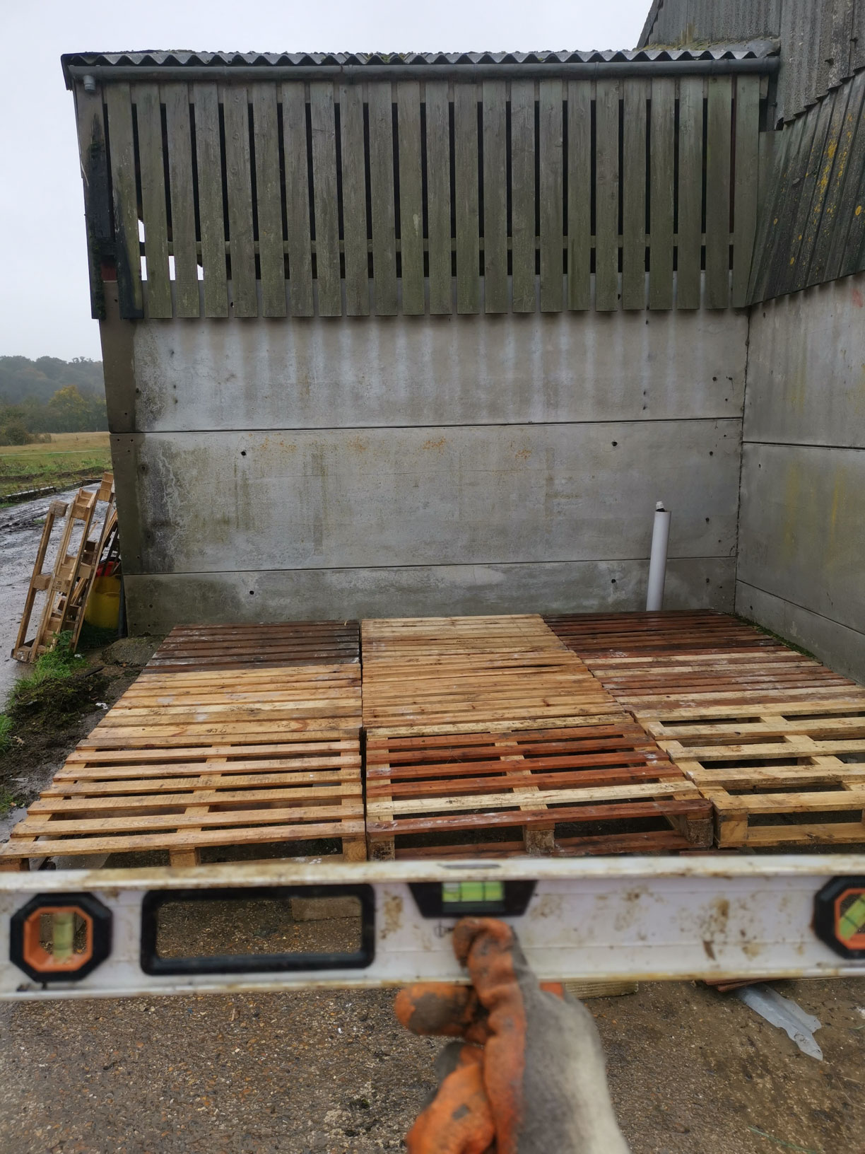 How To Build A Shed Out Of Pallets For Free Thatbloodybike Com